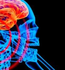 """""""La radiación electromagnética afecta al sistema nervioso, inmunitario y endocrino"""" 4"""