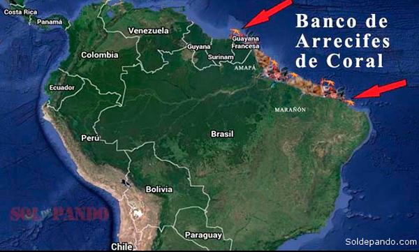 BRASIL: La ocupación costera desordenada afecta a los arrecifes tropicales 1