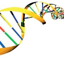 Identificada nueva familia de enzimas implicada en la resistencia a antibióticos 7