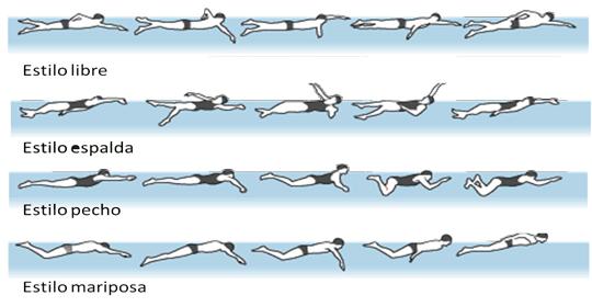 Los diferentes estilos de la natación