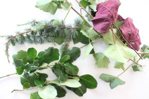 How to preserve leaves for a Christmas wreath