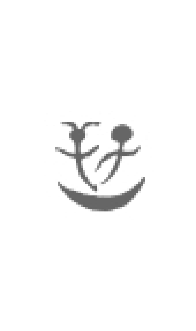 Trattato del Ribelle | Ernst Jünger - Adelphi Edizioni