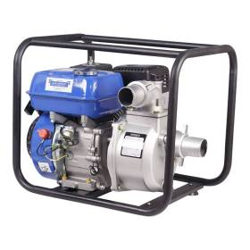 Motorized Water Pumps