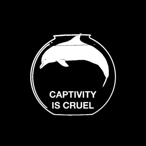 Captivity is cruel.