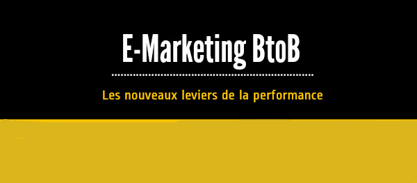 Infographie E-Marketing BtoB 2013 (Emailing, mobile, SMO)