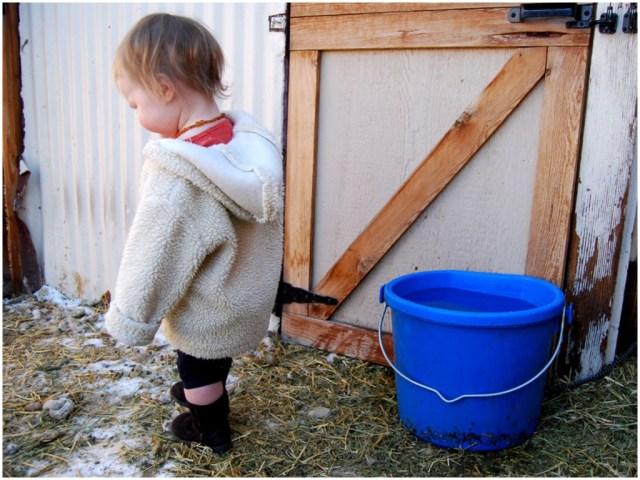 A Denver Home Companion | baby barn yard girl