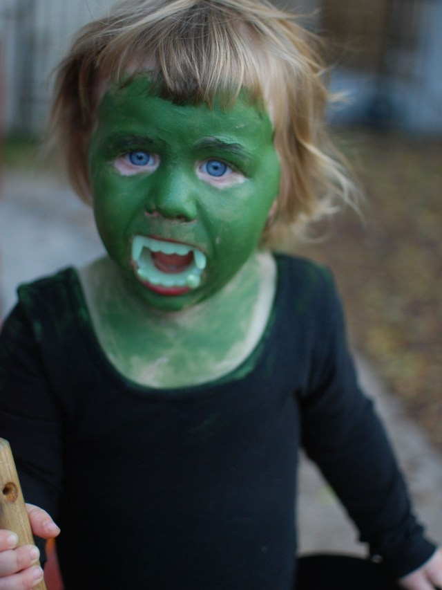 A Denver Home Companion | wicked witch of the west halloween costume