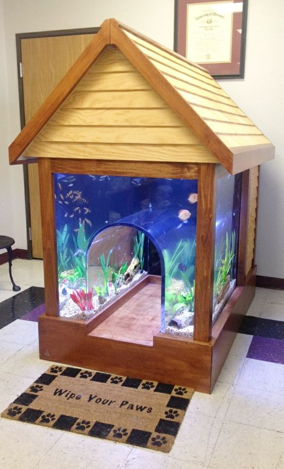 Custom 2-in-1 fish tank / dog kennel - incredible! #product_design