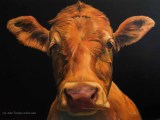 Alkyds Cow commission