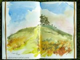 Line and wash - Colmer's Hill