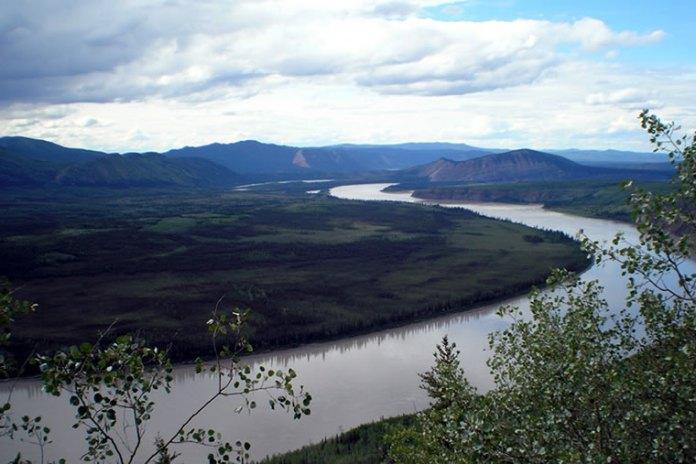 Yukon (Eagle) Media, Alaska Fisheries Sonar, Alaska Department of Fish and Game