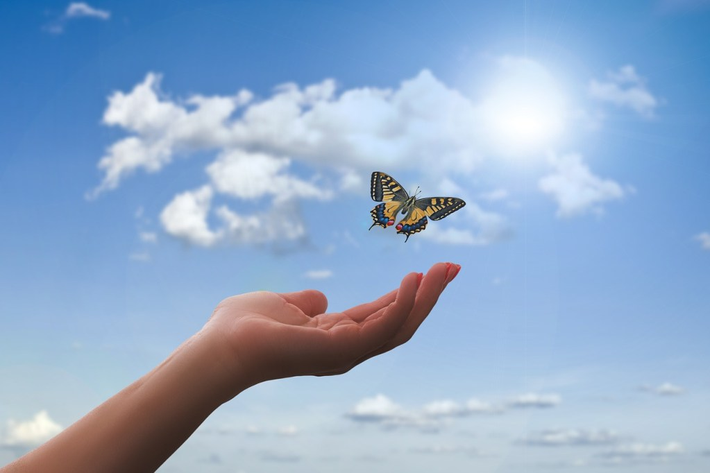 hand, butterfly, clouds