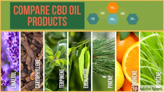 compare cbd brands, compare cbd oils, nuleaf vs cbdistillery, lazarus vs nuleaf, cbd comparison chart, lazarus vs cbdistillery, cbd oil comparison chart, best terpenes brand, cbd compare, oil comparison chart, compare cbd, terpene chart, cbd oil with terpenes, cbd oil comparison, best terpene company, comparison of cbd amounts in a dose by brand,, compare cbd oil products, nuleaf vs cbdistillery, nuleaf vs lazarus, nuleaf vs cbdistillery