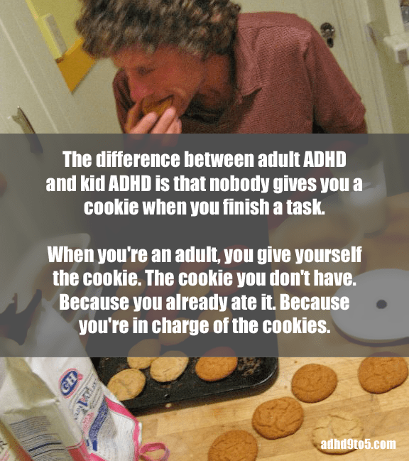 adult adhd no cookies
