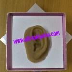 Telinga palsu