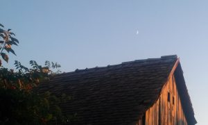 luna si casa (3)