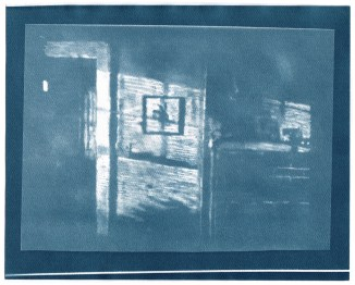 "Rabbit, cyanotype contact print of graphite drawing on vellum, 8"" x 10"", 2015"
