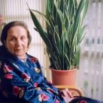 mitos sobre los mayores dependientes