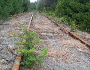 Tahawus Rail Line (Phil Brown Photo)