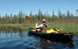 Phil Brown paddles Shingle Shanty Brook in the Adirondack Park