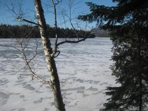 Andy Coney Lake Photo