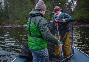 Follensby Pond Lake Trout Survey (Erika Edgley - TNC Photo)