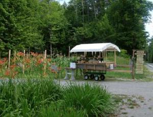 Fosdick Chestertown Organic Farm