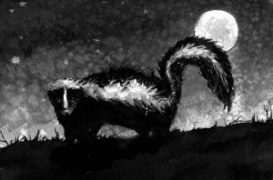 skunk the outsider