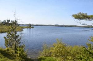 Raquette Lake Dave Gibson