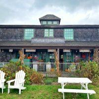 My Pandemic Getaway: The Hamptons