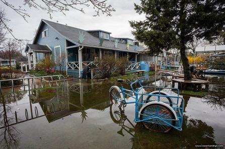 Island Cafe (photo credit Sean Tamblyn)