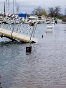 Outer HarbourMarina (Photo credit: Erin Carey