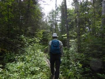 Hike to White River