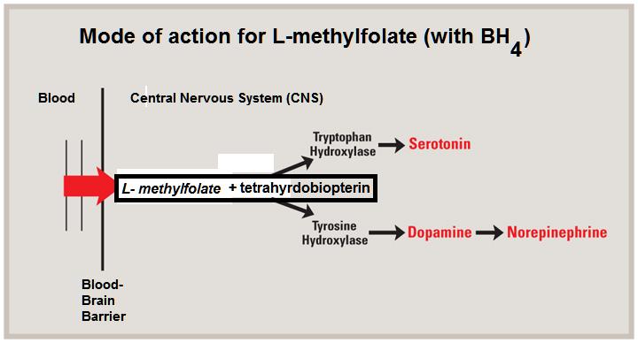 Folate Adjuvant to Antidepressants