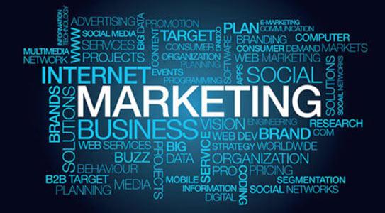 Focus on content marketing & social branding