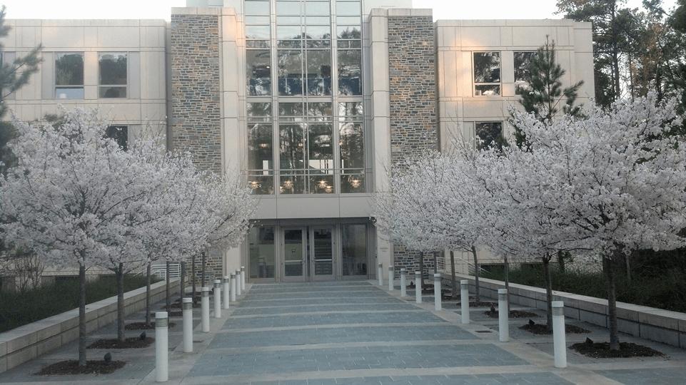 Duke University S Fuqua School Of Business Sample Essay
