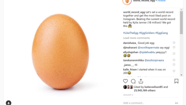 Insta-Egg influencer