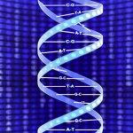 Bilim insanları, minik DNA tabanlı robot ve nano cihazların vücudumuza ilaç vereceğine, ölümcül patojenlerin varlığını tespit edeceğine ve giderek daha küçük elektronikler üretmeye yardımcı olacağına inanıyor. Araştırmacılar, çok daha karmaşık DNA robotları ve nano cihazlar tasarlayabilen yeni bir araç geliştirerek bu hedefe doğru büyük bir adım attı.