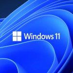 """Windows Latest'ın haberine göre Microsoft bu yazıyı Haziran ayında """"Şimdi Windows 11, sürüm 21H2 gönderimlerini kabul ediyoruz"""" başlıklı şekilde yayınlandı. Microsoft, tüm ortaklarından Windows 11 21H2 güncellemesiyle uyumlu sürücüleri """"24 Eylül 2021'e kadar göndermelerini"""" istiyor. Tam metin şu şekilde:"""