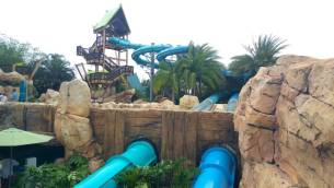 Aquatica dolphin slide