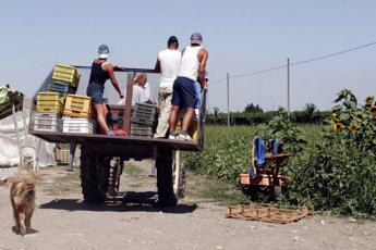 Migranti, Lamorgese: Cercare equilibrio tra mercato e sicurezza lavoratori