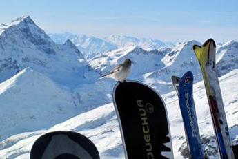 Covid e sci, Viola: Cauti su apertura piste a gennaio