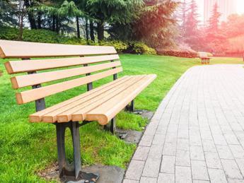 Foreste urbane, ecco le prime 'Città di alberi'