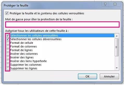 Excel2013-Gestion feuille-13