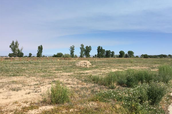 1325-fairway-vacant-lot-fruita