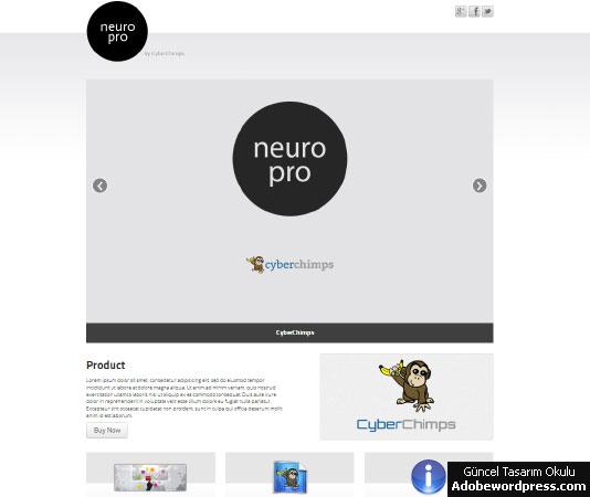 Neuro WordPress Teması