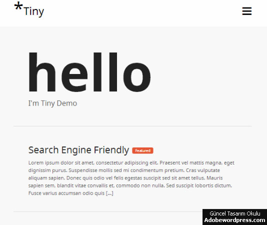 Tiny WordPress Teması