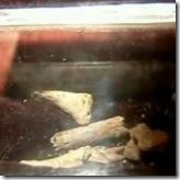 ossos-joão-batista