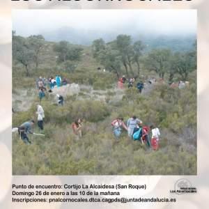 REFORESTACIÓN PARTICIPATIVA LOS ALCORNOCALES Familia con Niños (SAN ROQUE)