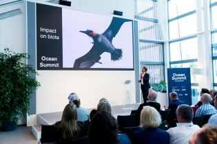 Dockside,Spain,Race Village,Alicante,Ocean summit,2017-18,Racevillage, Village,port, host city,On-shore,Jesus Gago,Researcher at the Spanish Institute of Oceanography (IEO)